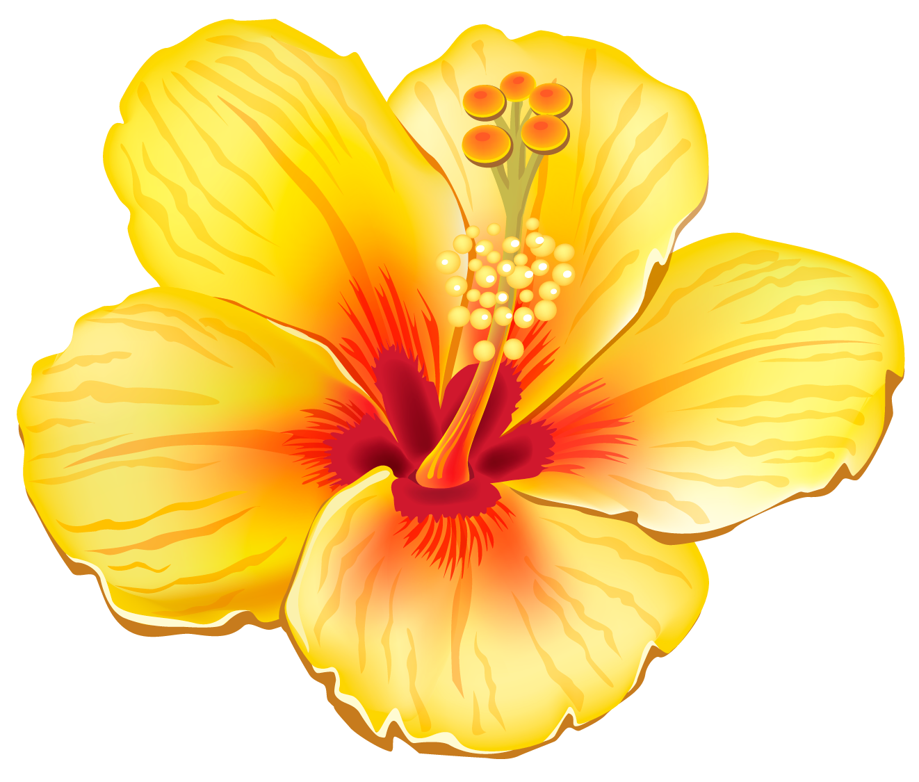 Tropical floral png. Yellow exotic flower clipart