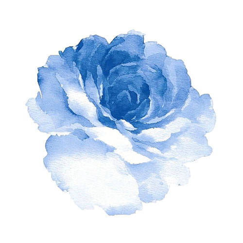 Blue watercolor flower png. All about the art
