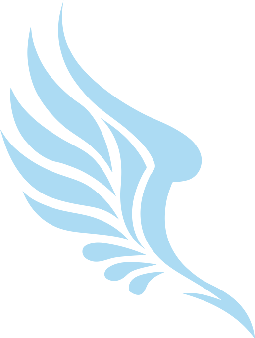 Wing logo png. Image one piece ship