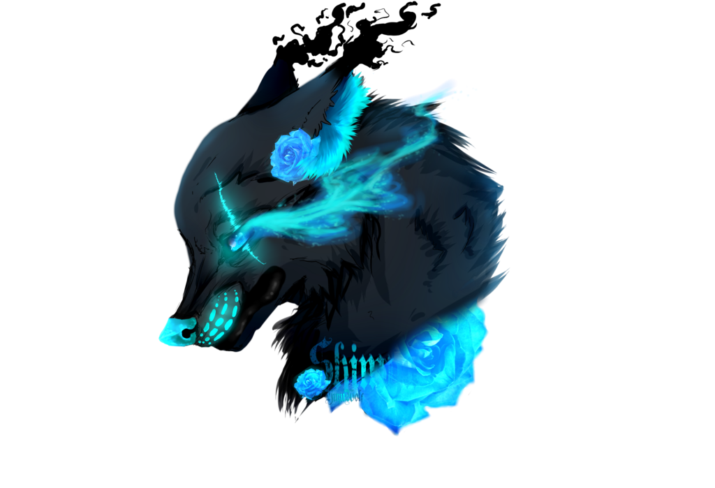 Blue wolf png. Image shimya rose by