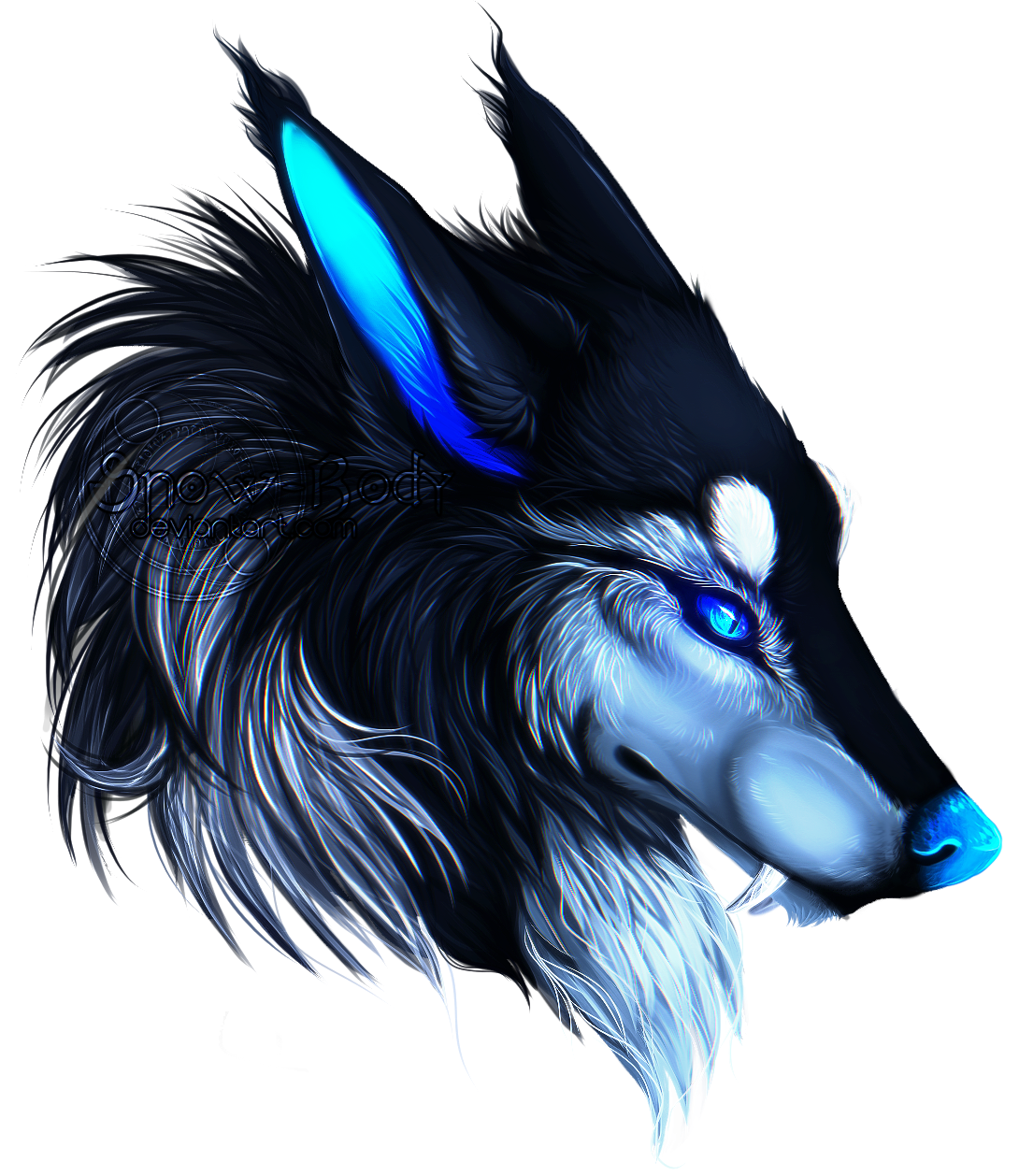 Blue wolf png. The wolves www elementalwolves