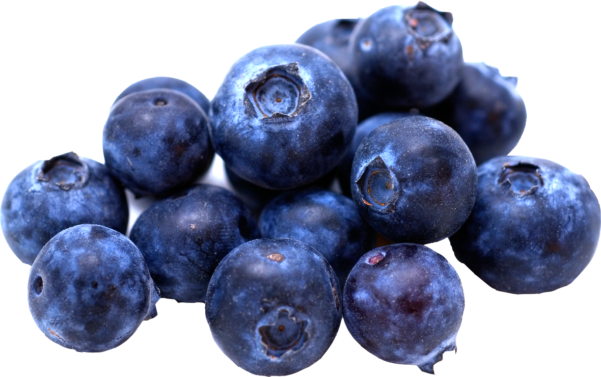 Blueberries clipart blue food. Png images free download