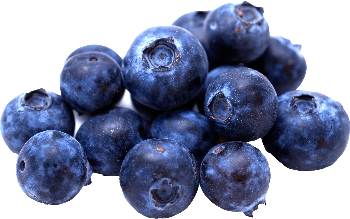Blueberries clipart transparent background. Group of png stickpng
