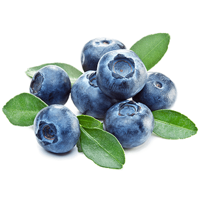 Fruits transparent blueberry. Blueberries png images stickpng