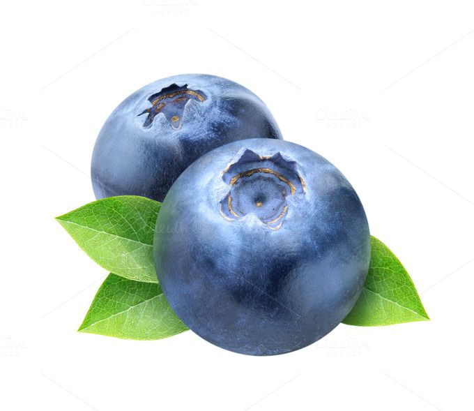 Blueberry clipart. Two blueberries with leaves
