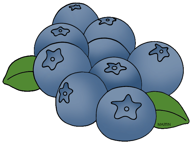 Blueberry clipart huckleberry. United states clip art