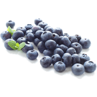 Blueberry clipart. Download free png photo