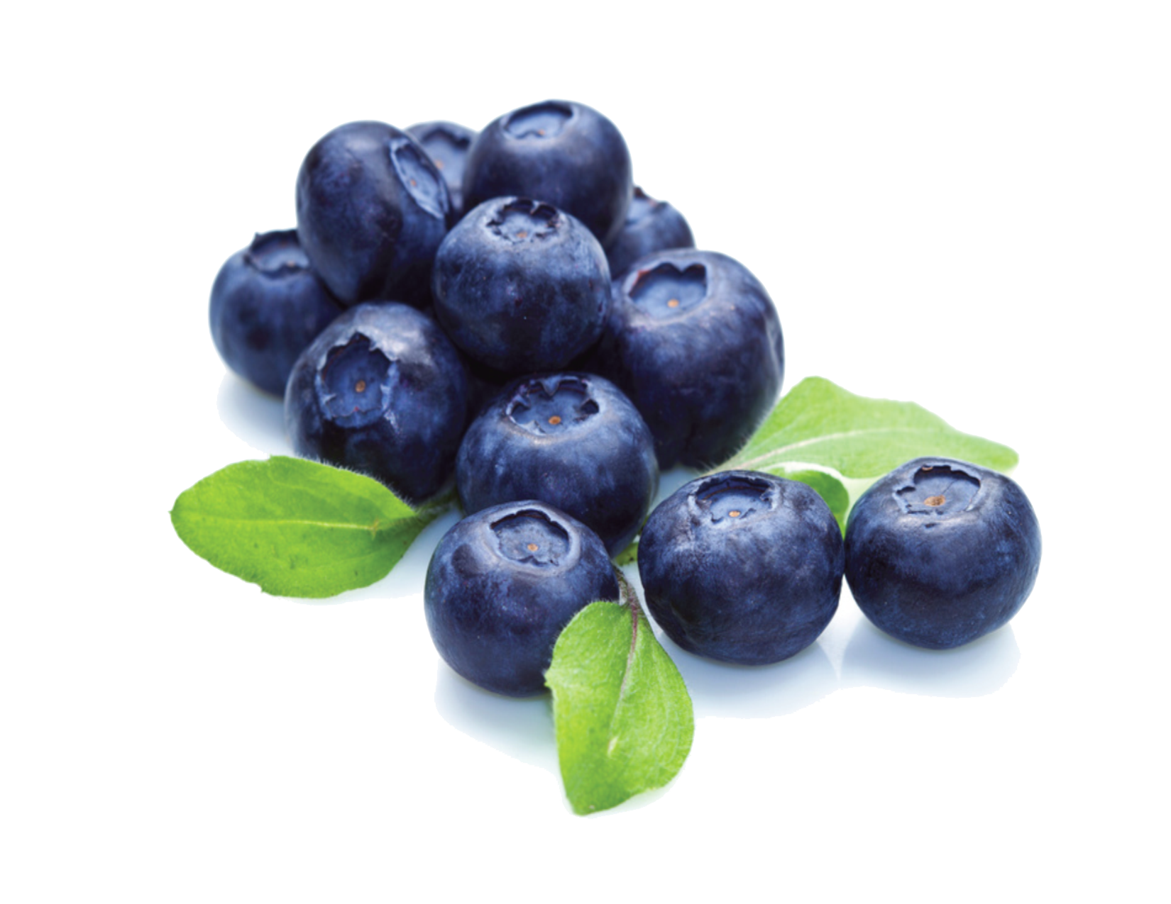Blueberry png. File mart