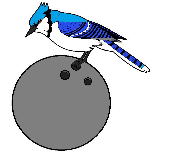 Bluejay drawing gray jay. Blue loves bowling by