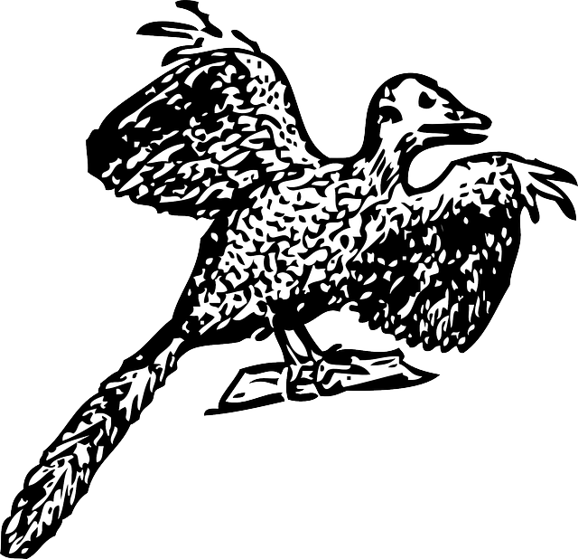 Bluejay drawing in flight. Flying sparrow at getdrawings