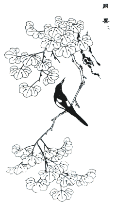 Blossom drawing bird. Chinese flower and fruit