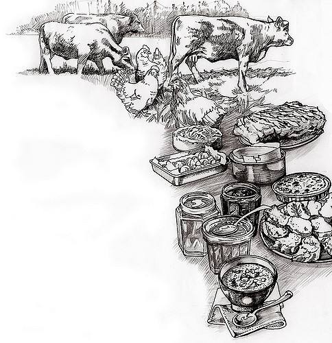 Blunt clipart drawn. Food drawing field to
