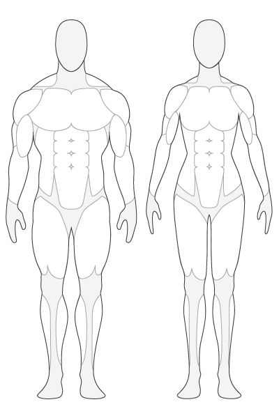 Body clipart body balance. Free medical cliparts download