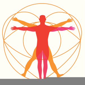 Body clipart public. Healthy image free images