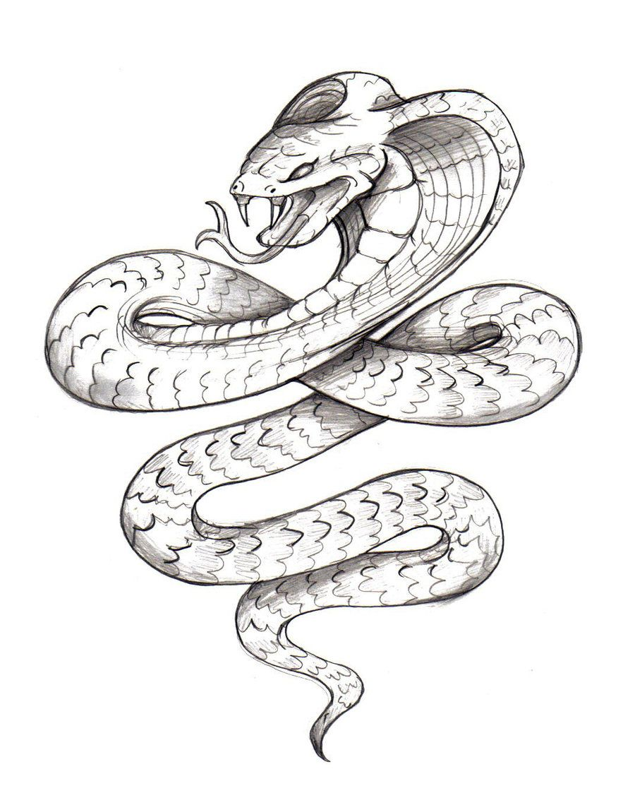 Body clipart snake. By zaphrozz traditional art