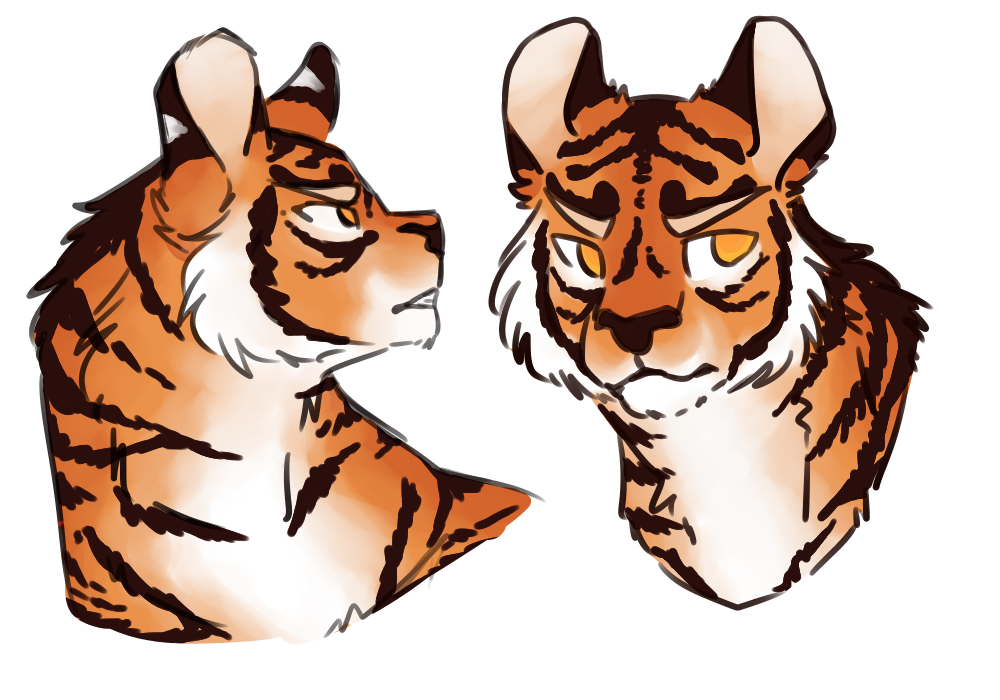 boi transparent tiger