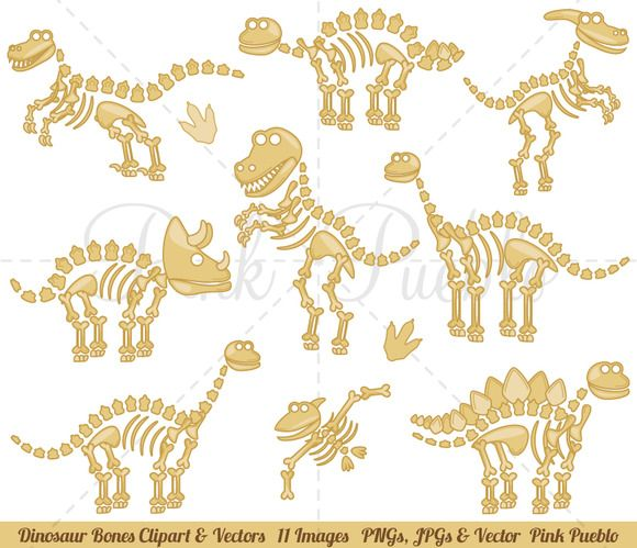 Bone clipart dinosaur bone. Fossils or bones