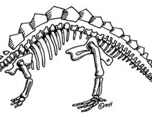 Bone clipart dinosaur bone. Skeleton clip art bones