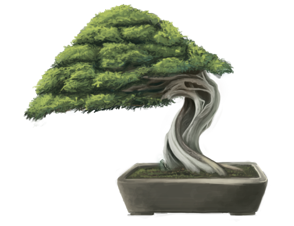 Bonsai tree png. By minums on deviantart