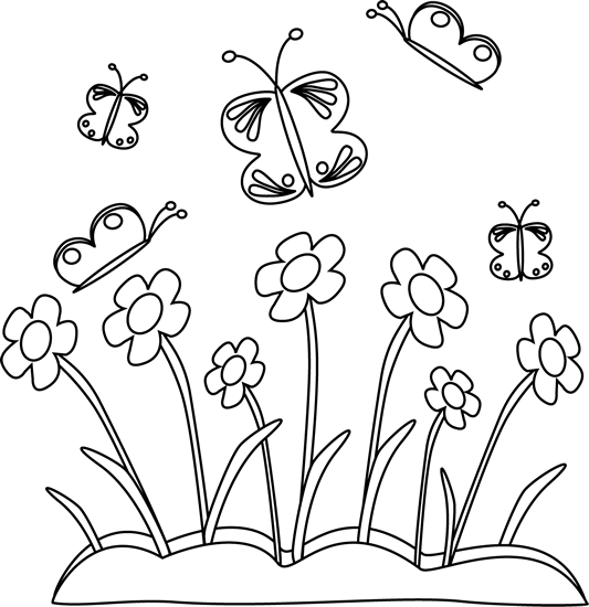 Drawing spring butterfly. Black and white flowers
