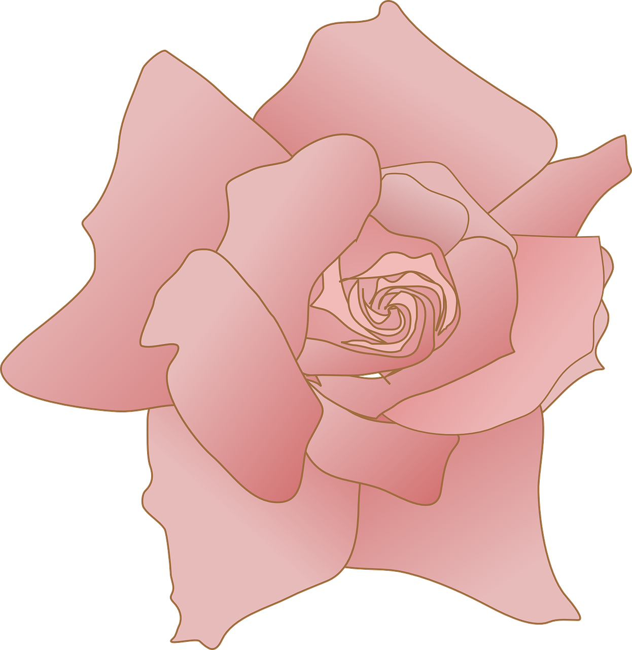 Bookmark drawing rose. The best drawings of