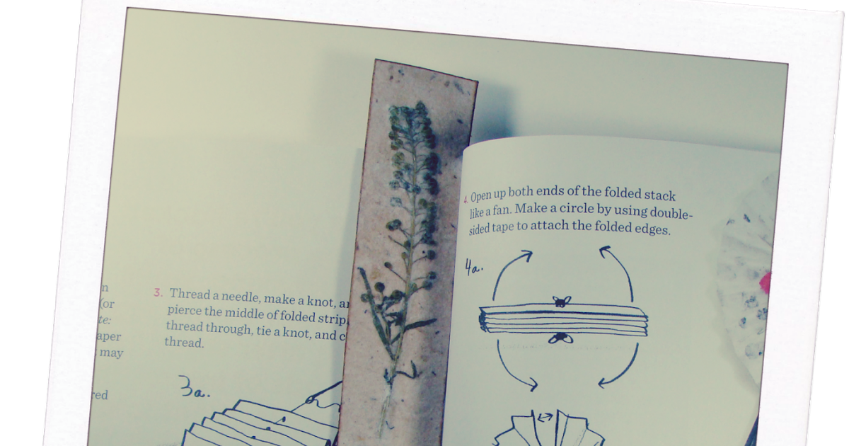 Bookmark drawing sketch. Bookmarks and pressed flowers