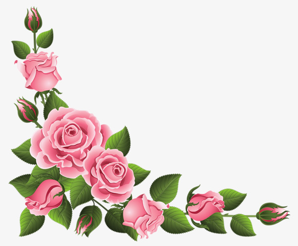 Border clipart pink rose. Lace flowers chinese png