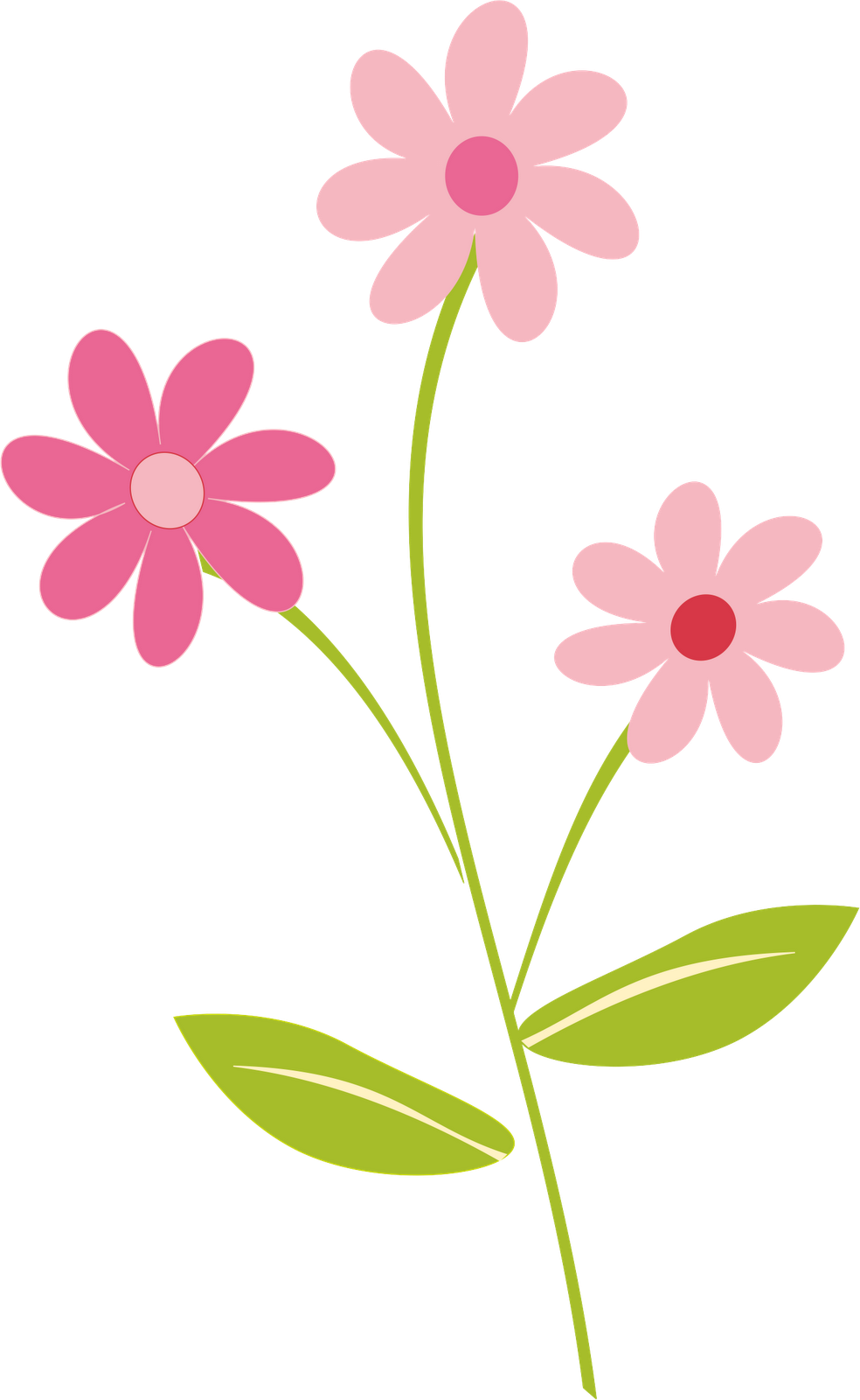 Border clipart png. Flowers pictures transparentpng