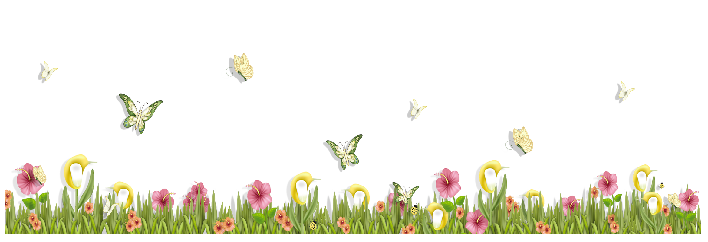 Border flowers png. Grass with butterflies and