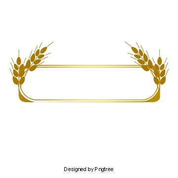 Vector gold line. Border png vectors psd