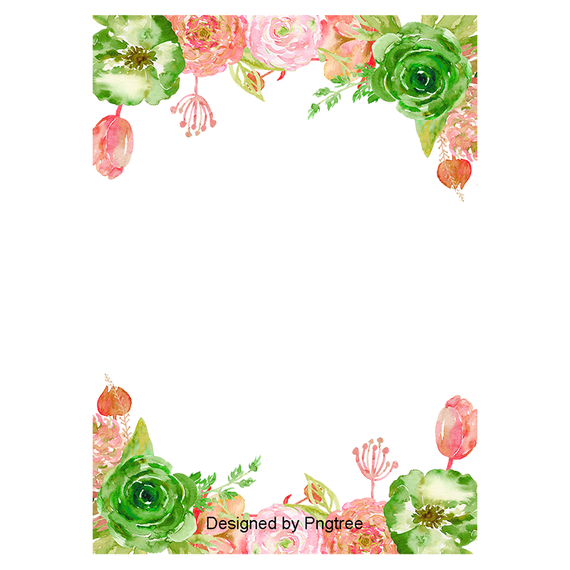 Vector flores png. Hand painted flower borders