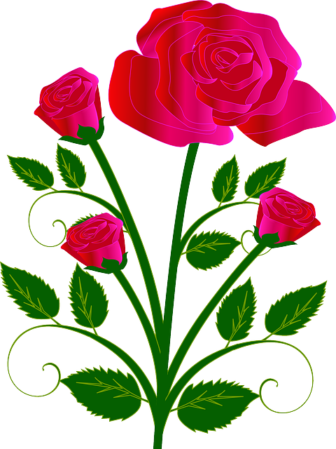 Vector bouquet wildflower. Free image on pixabay
