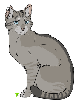 Boulder drawing. By thecatspupil warrior cats