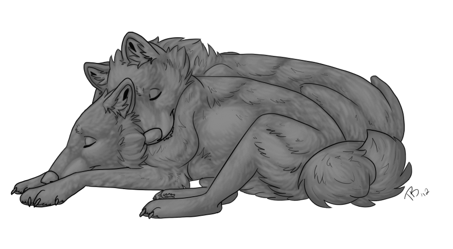 Boulder drawing cuddle. Free wolf template by