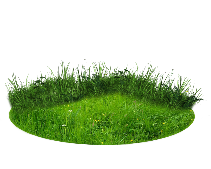 Boulder drawing grass. Png patch of land