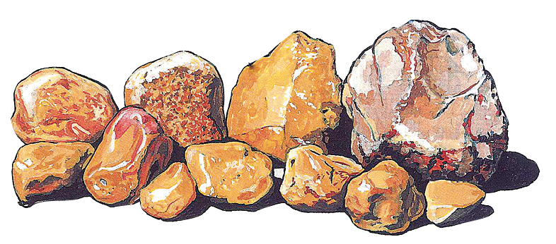 Transparent rocks opaque. The rock picker s