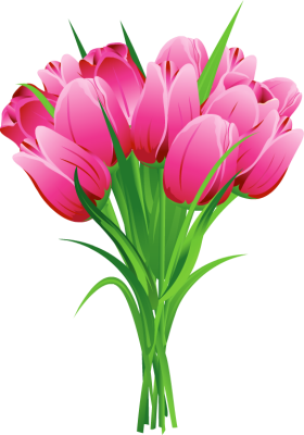 Png flowers. Tulip bouquet free clipart