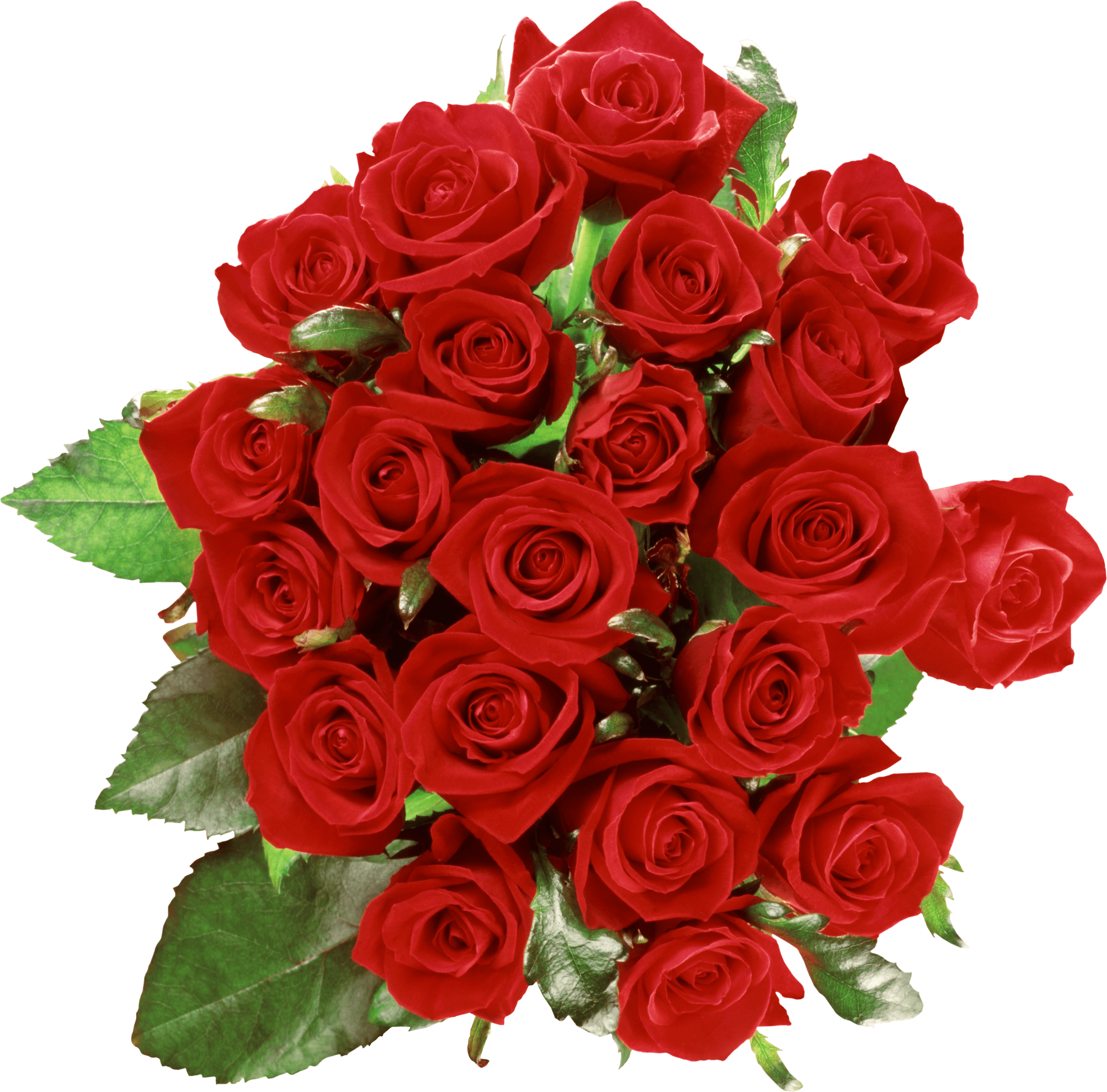 Bouquet of flowers png. Roses transparent stickpng