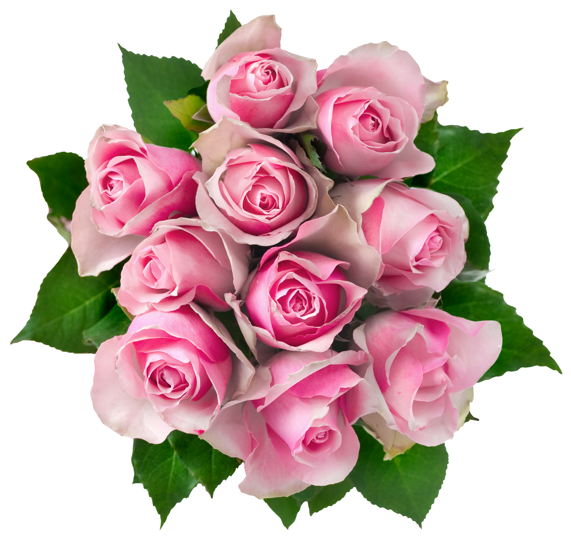 Images free download. Transparent png bouquet of flowers jpg library