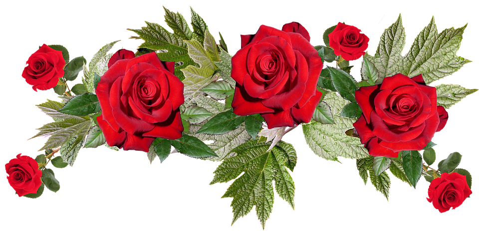 Bouquet of roses png. Free photo anniversary flower