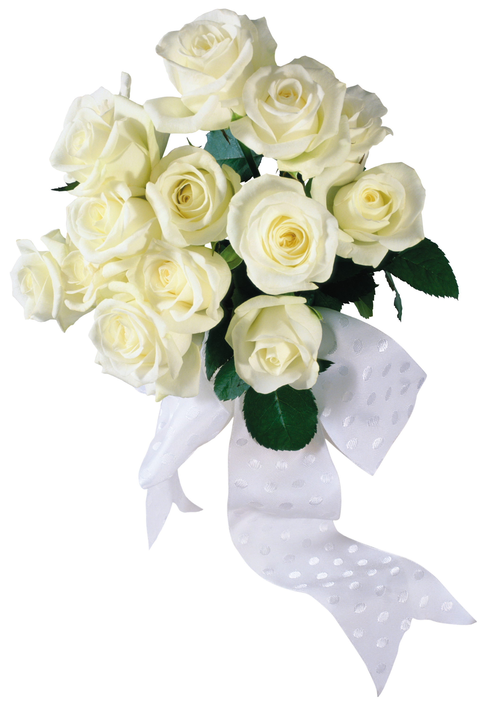 Bouquet Of White Roses Transparent Png Clipart Free Download Ya