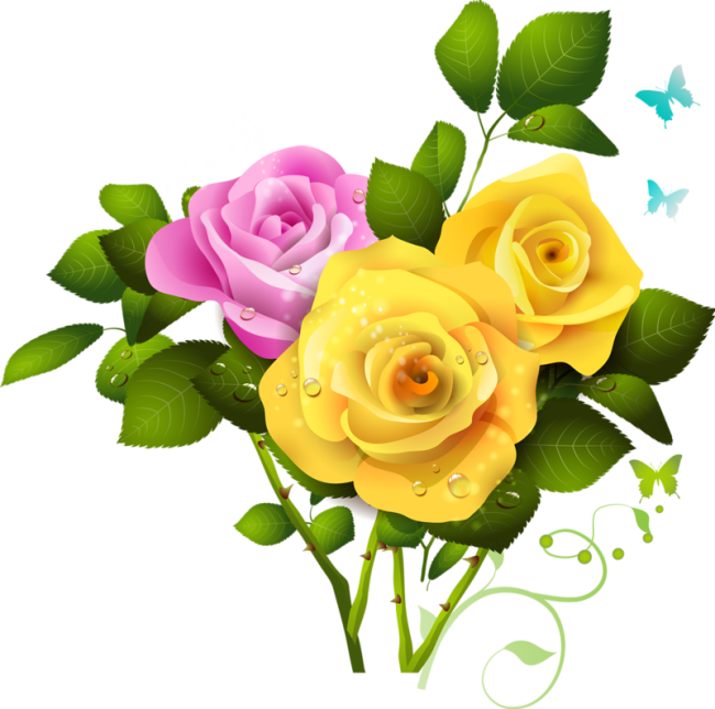 Bouquet of yellow roses png. And pink rose clipart