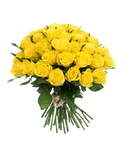 Bouquet of yellow roses png. Flowers free images toppng