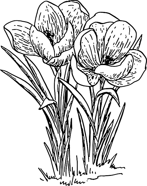 Bouquet outline png. Flower clipart library free