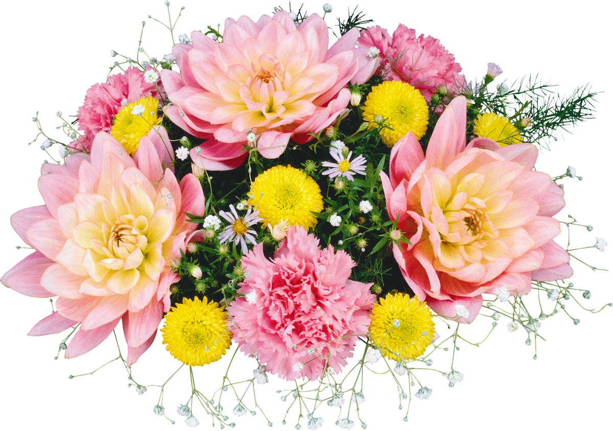 Flowers png. Flower bouquet clip art
