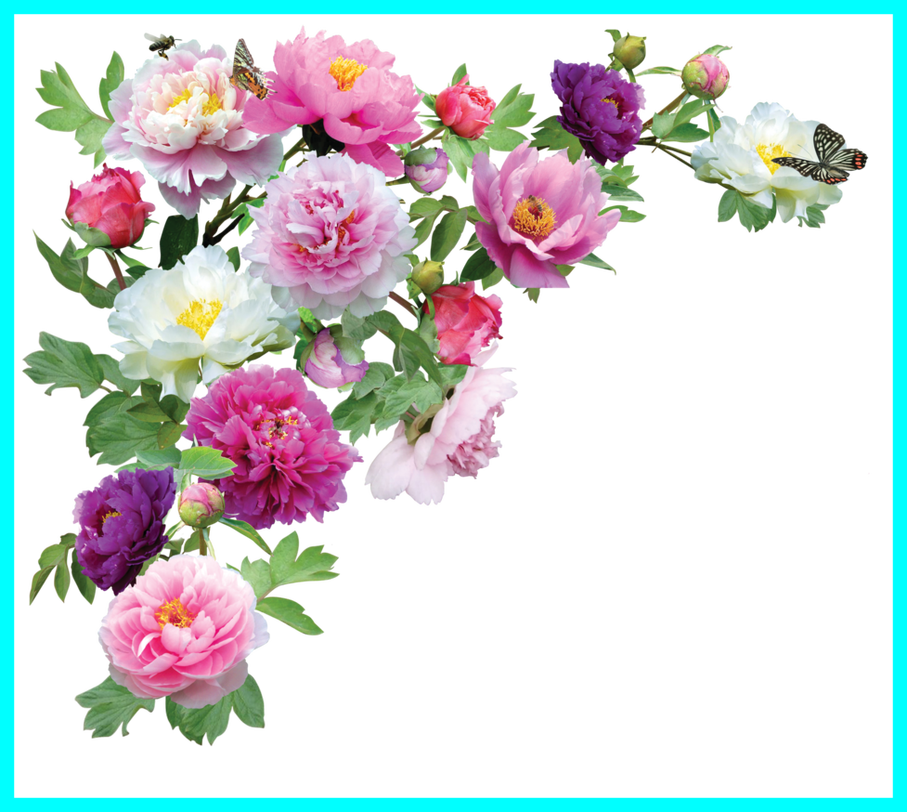 Bouquet png tumblr. Stunning flowers hd for