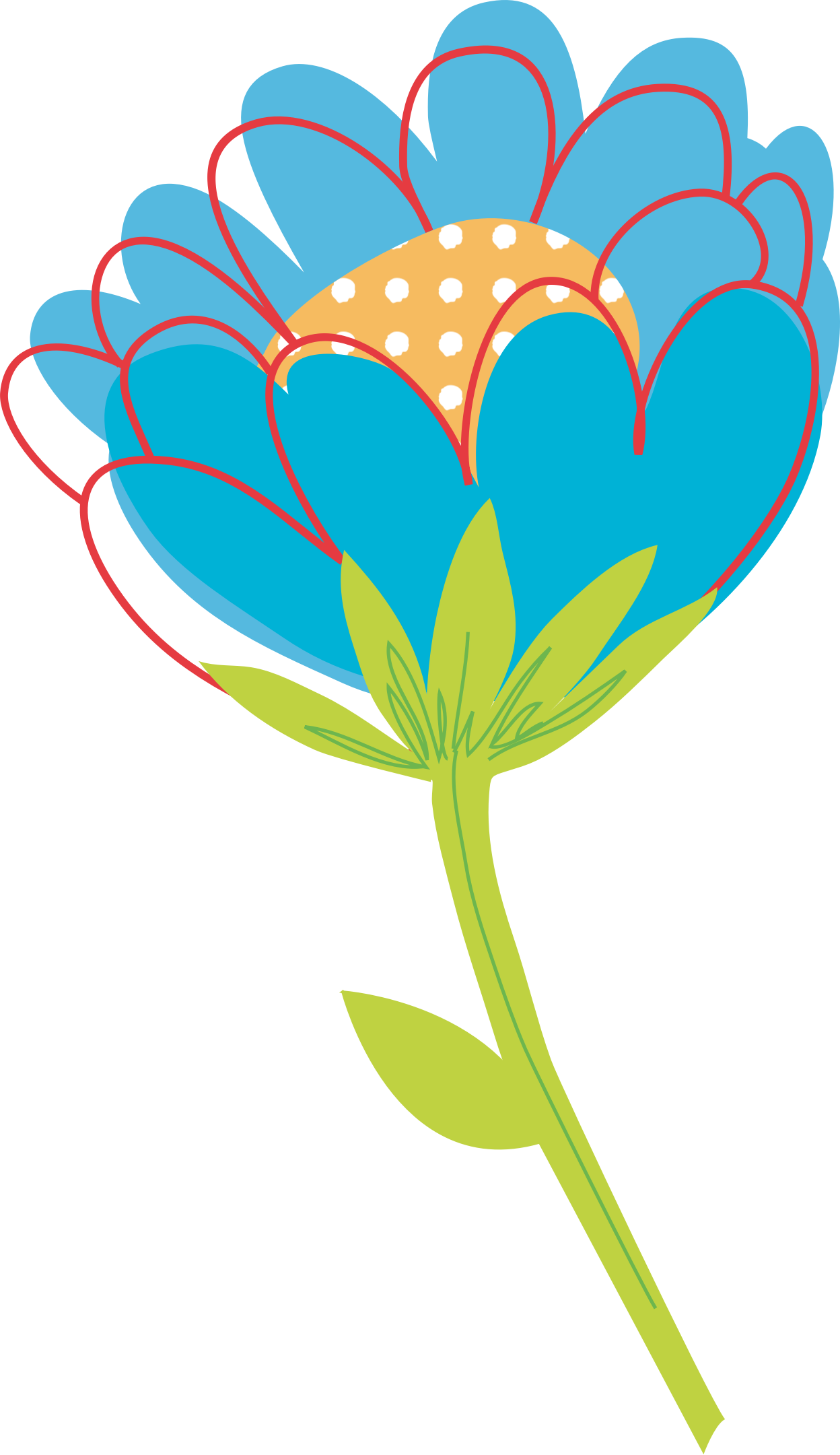 Bouquet vector blue flower. By konand bloomed single
