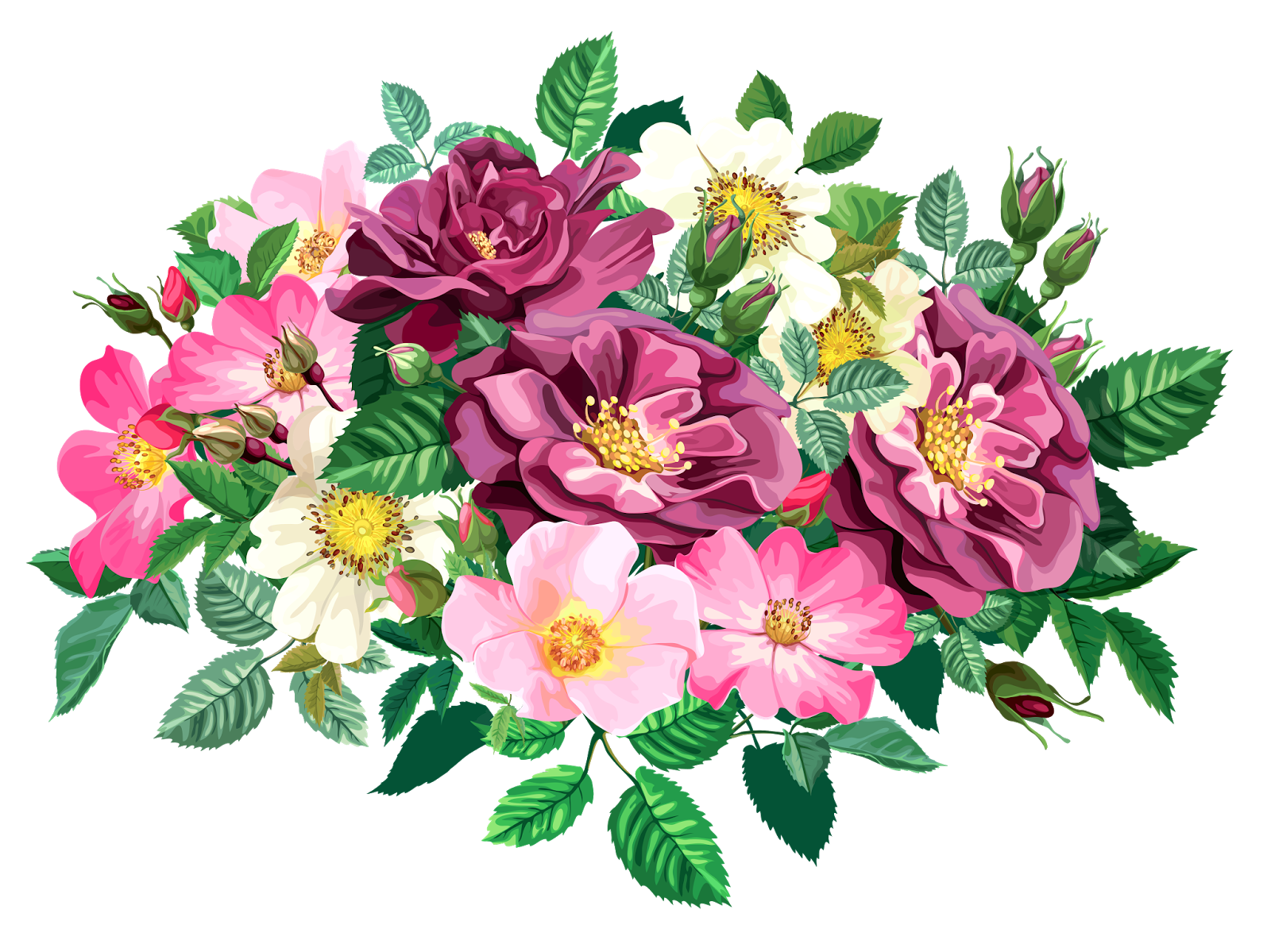 Bouquet vector bunch flower. Rose cl part transparent