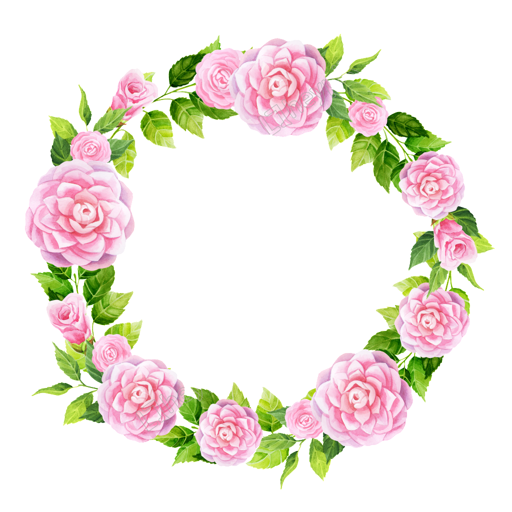 Bouquet vector hand. Painted pink camellia wreath