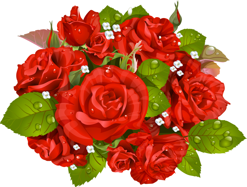 Bouquet vector valentine flower. Rose stock photography clip
